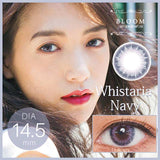 Bloom 1 Day WhistariaNavy - 小さい兎USAGICONTACTカラコン通販 | 日本美瞳 | Japanese Color Contact Lenses Shop
