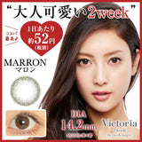 Victoria 2 Week Marron - 小さい兎USAGICONTACTカラコン通販 | 日本美瞳 | Japanese Color Contact Lenses Shop