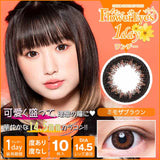 Flowereyes 1 Day MimosaBrown - 小さい兎USAGICONTACTカラコン通販 | 日本美瞳 | Japanese Color Contact Lenses Shop