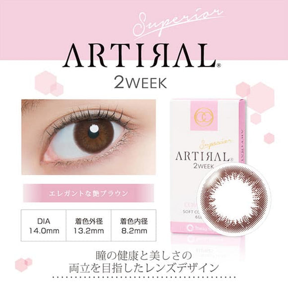 Artiral 2 Week Brown - 小さい兎USAGICONTACTカラコン通販 | 日本美瞳 | Japanese Color Contact Lenses Shop