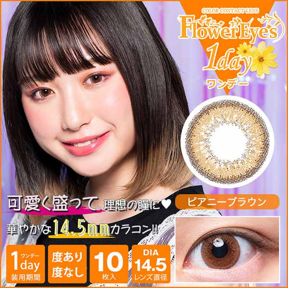 Flowereyes 1 Day PeonyBrown - 小さい兎USAGICONTACTカラコン通販 | 日本美瞳 | Japanese Color Contact Lenses Shop