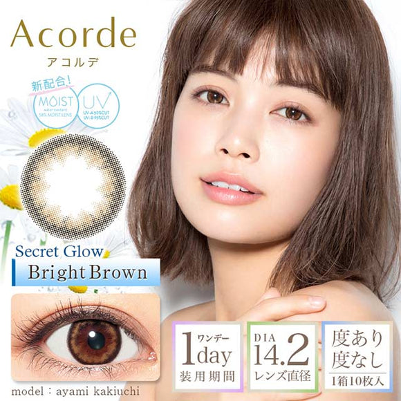 Acorde 1 Day BrightBrown - 小さい兎USAGICONTACTカラコン通販 | 日本美瞳 | Japanese Color Contact Lenses Shop