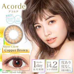 Acorde 1 Day CopperBrown - 小さい兎USAGICONTACTカラコン通販 | 日本美瞳 | Japanese Color Contact Lenses Shop
