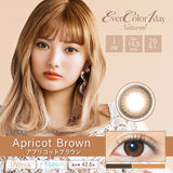 EverColor 1 Day Natural UV ApricotBrown - 小さい兎USAGICONTACTカラコン通販 | 日本美瞳 | Japanese Color Contact Lenses Shop