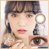 Bloom 1 Day AmberOrange - 小さい兎USAGICONTACTカラコン通販 | 日本美瞳 | Japanese Color Contact Lenses Shop