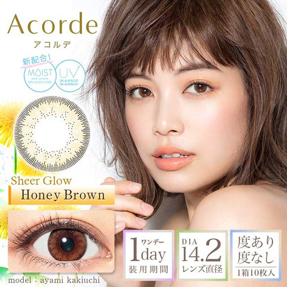 Acorde 1 Day HoneyBrown - 小さい兎USAGICONTACTカラコン通販 | 日本美瞳 | Japanese Color Contact Lenses Shop