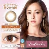 EverColor 1 Day UV MarronBlink - 小さい兎USAGICONTACTカラコン通販 | 日本美瞳 | Japanese Color Contact Lenses Shop