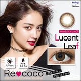 Recoco 1 Day Lucent Leaf - 小さい兎USAGICONTACTカラコン通販 | 日本美瞳 | Japanese Color Contact Lenses Shop