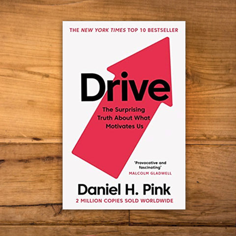 Drive : The Surprising Truth About What Motivates Us by Daniel Pink