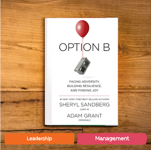 Option B : Facing Adversity, Building Resilience, and Finding Joy by Sheryl Sandberg
