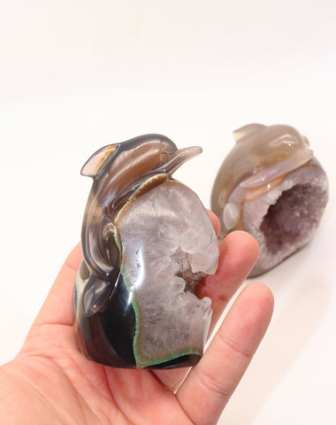 Beautiful Agate Druzy Dolphins