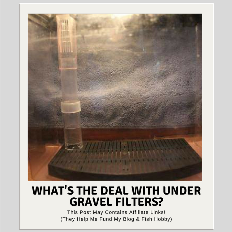 What's The Deal With Under Gravel Filters?