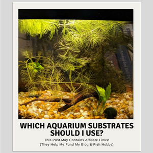 Which Aquarium Substrates Should I Use?