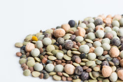 Crunchy Bean Mix - Organic, non-GMO Sprouting Seeds