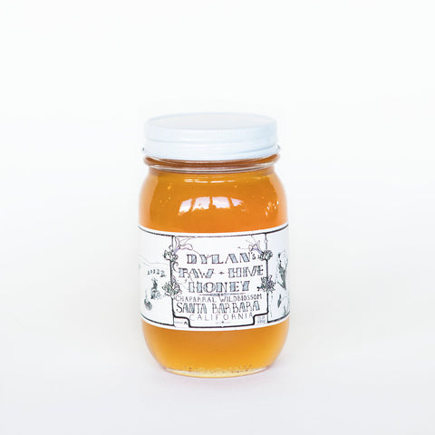 Dylan's Raw- Hive Honey 24oz.