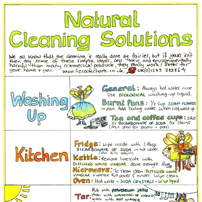 Natural Cleaning Solutions Wall Chart
