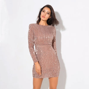 Fiona Sequin Bodycon Dress