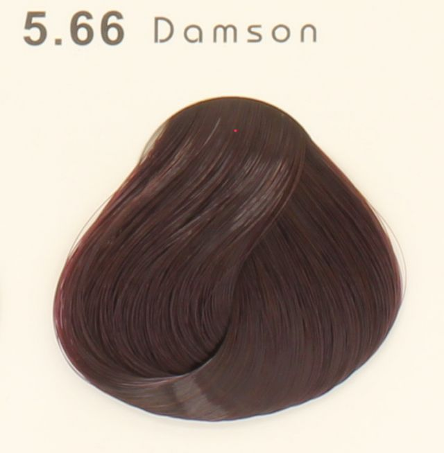 Valentina Campos Hair Color 5.66 ID #7870 - Warehouse Beauty