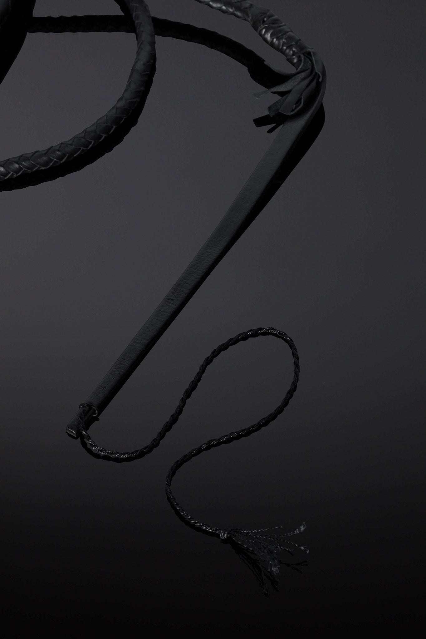 House of SXN Flagella Leather Whip 3