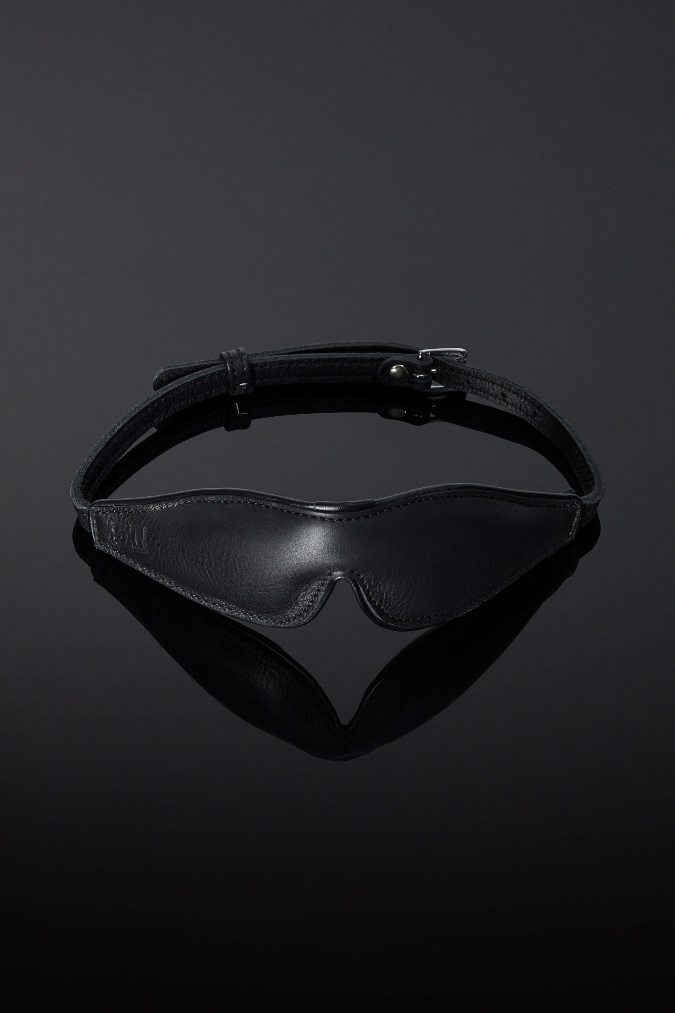 House of SXN Noctis Mask Blindfold 1