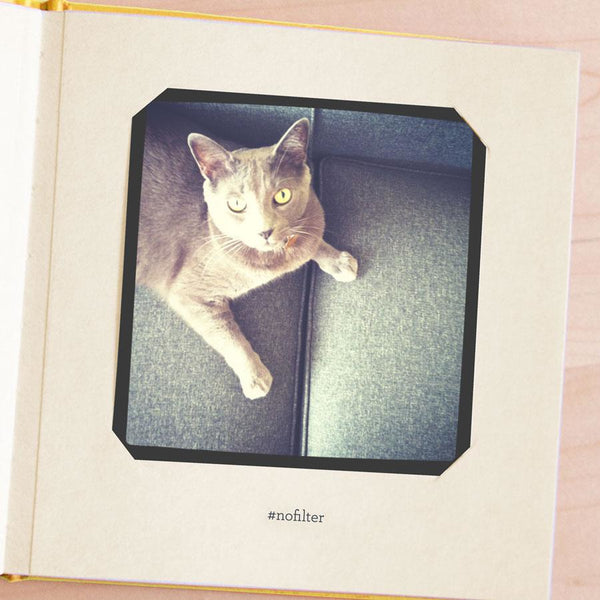 Photo Album - Petsies