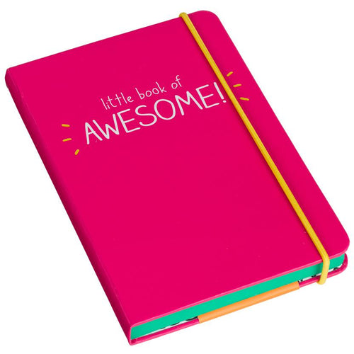 A6 Little Book Of Awesome Notebook Pink