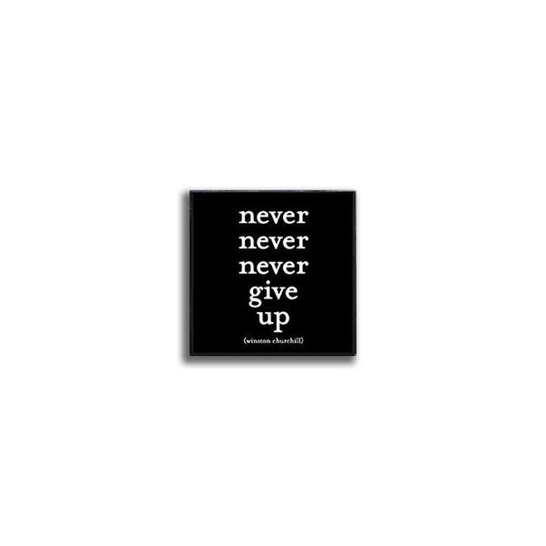Pin - Never give up