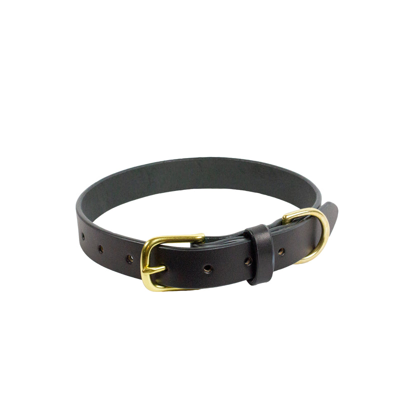 DANTE COLLAR - Black & Brass
