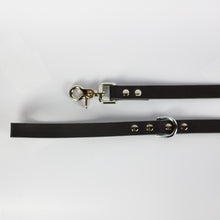 PREMIUM LEASH - BLACK & NICKEL