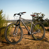 Pilsner - Ultimate Adventure Bike * - BearCraft Bikes