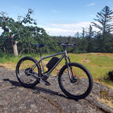 Electro Pilsner - Ultimate Adventure Ebike