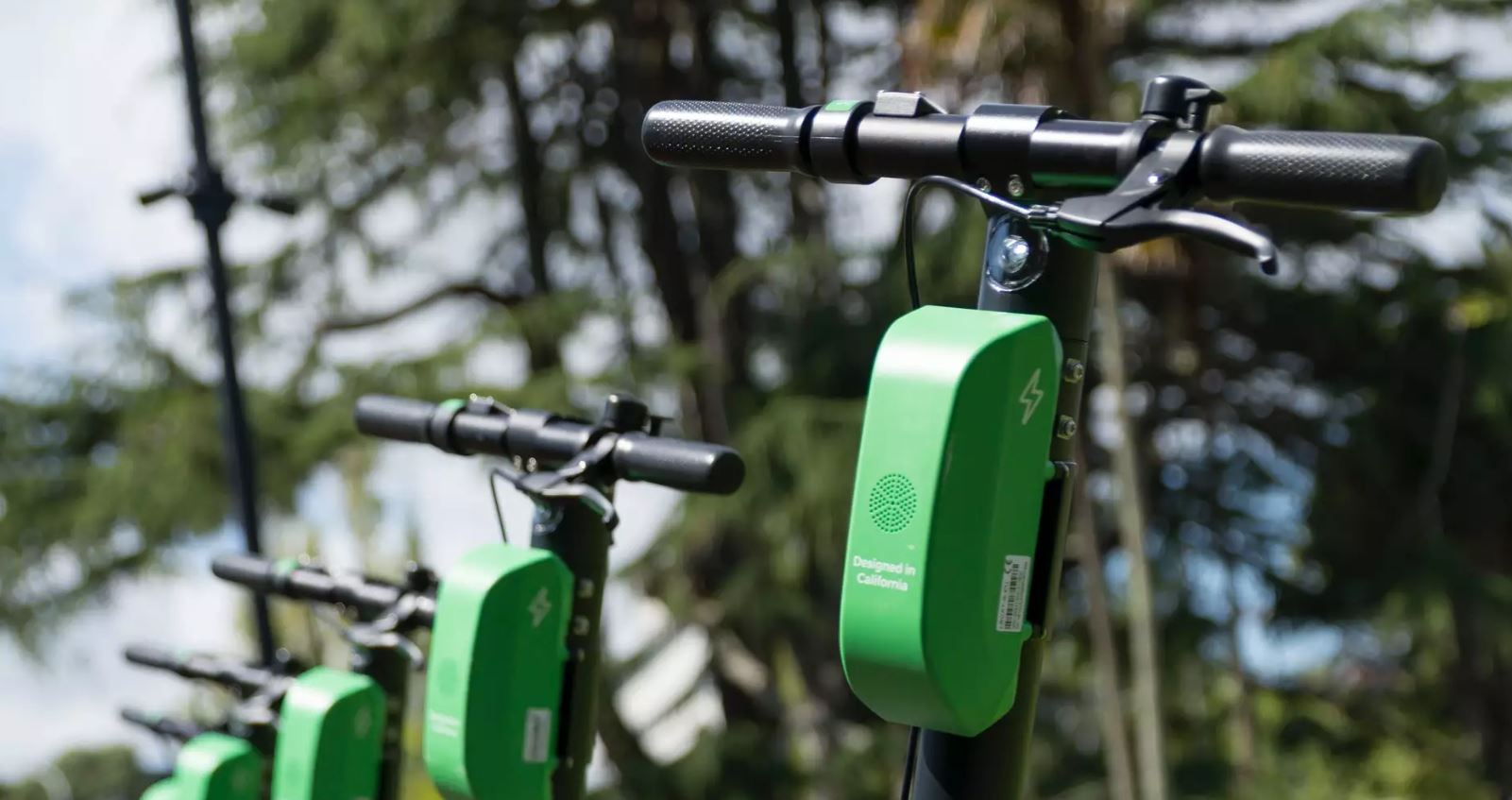 Green Scooters Invade Local Cities!