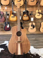 COLE CLARK FL2EC ALL BLACKWOOD-CASE