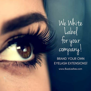 Eyelash Extension Reviews: Why Everyone Loves Buzz Lashes