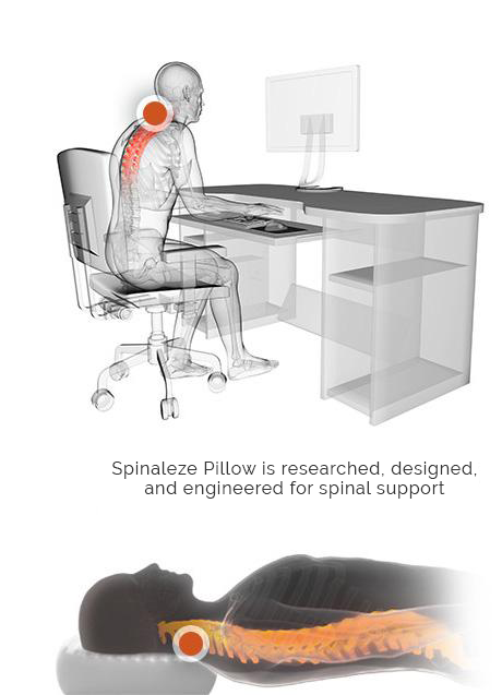 Spinaleze Pillows for spinal support