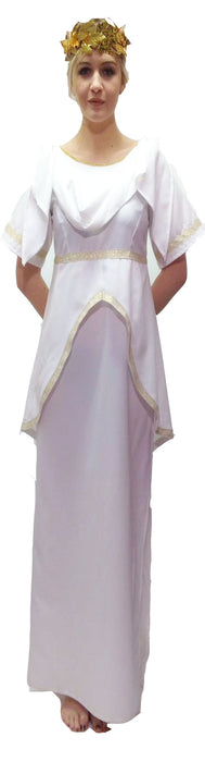 NEW Greek Goddess Female Hire Costume - The Ultimate Balloon & Party Shop
