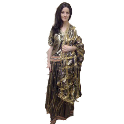 Indian Sari Hire Costume - The Ultimate Party Shop
