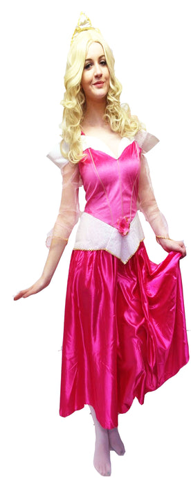 Disney Sleeping Beauty (Original) Hire Costume