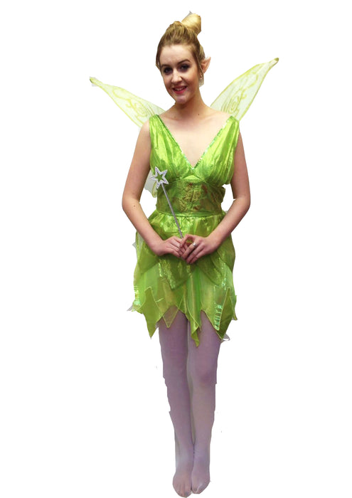 NEW Disney Tinkerbell Hire Costume - The Ultimate Party Shop