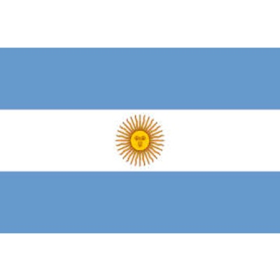 Argentina Flag - The Ultimate Party Shop