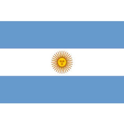 Argentina Flag - The Ultimate Balloon & Party Shop