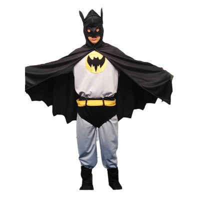 Bat Hero Hire Costume - The Ultimate Party Shop