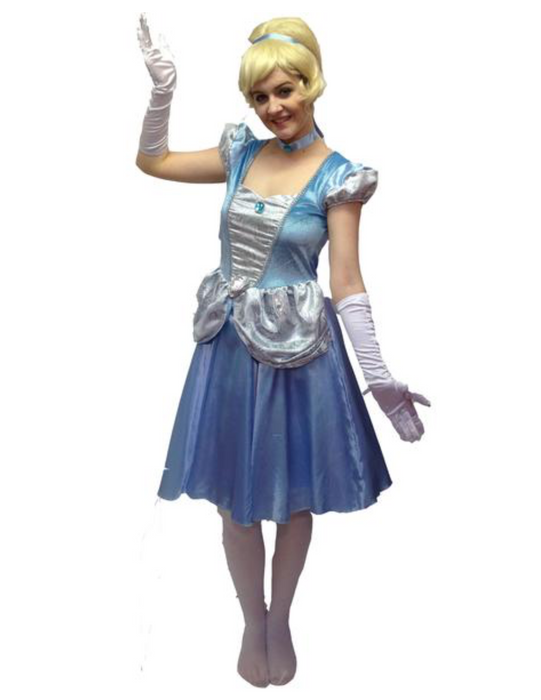 NEW Disney Cinderella Hire Costume - The Ultimate Party Shop