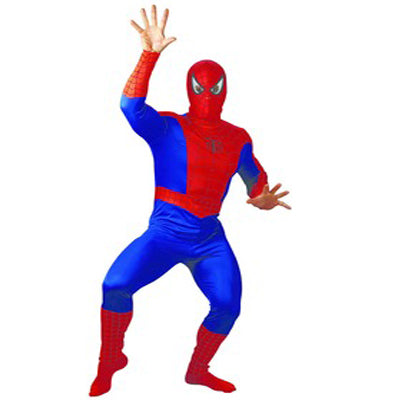 Spiderman Hire Costume