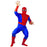 Spiderman Hire Costume - The Ultimate Party Shop