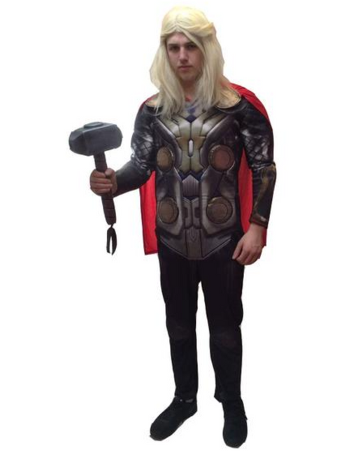 NEW Thor - The Avengers Hire Costume