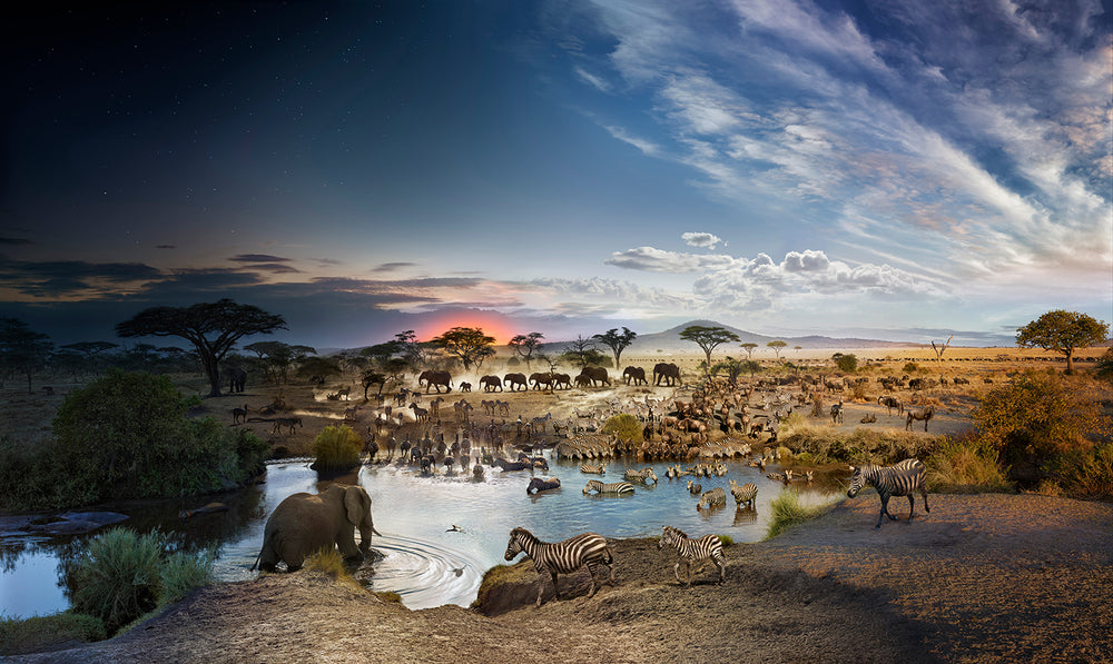Load image into Gallery viewer, STEPHEN WILKES DAY TO NIGHT - SERENGETI NATIONAL PARK, TANZANIA
