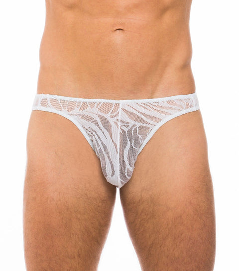 Fizzy Brief White