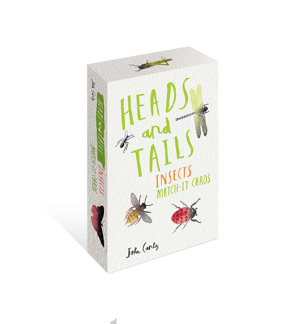 Heads & Tails // Insect Match It Game