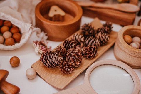 Mini Pine Cones (15pc)